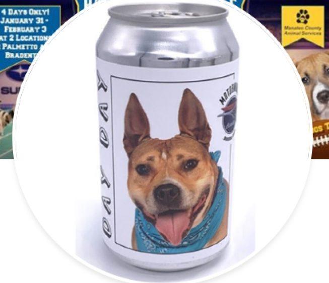"""Mulher encontra cachorro perdido em rótulo lata de cerveja de """"cães adotáveis"""""""