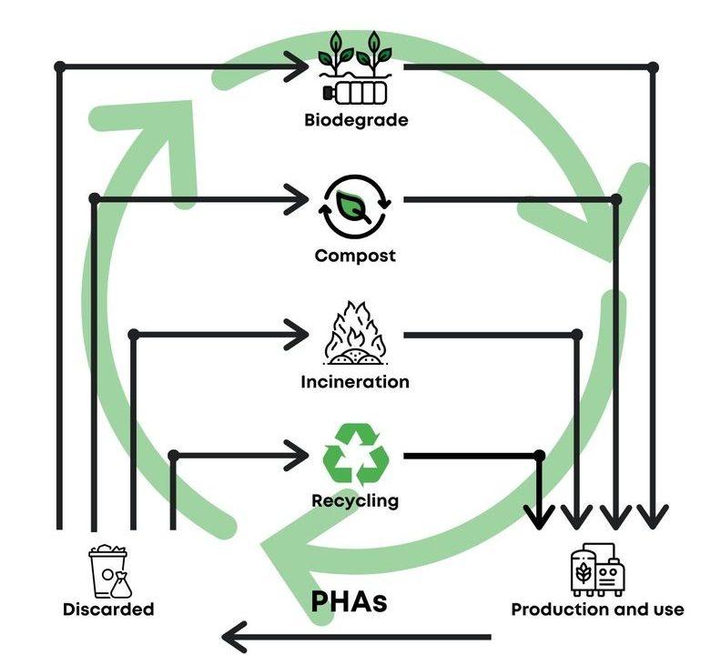 Milliken adere à GO!PHA para impulsionar uso de polímeros biodegradáveis