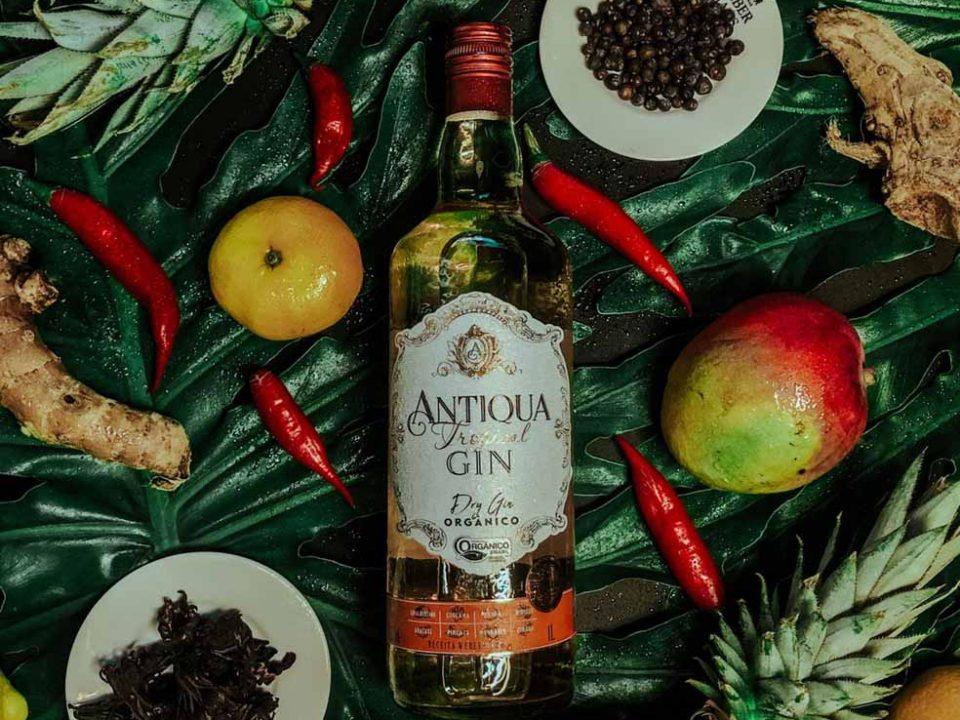 Novo gin da destilaria Weber Haus chega ao mercado